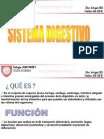 DIGESTIVO_1[1]