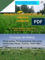PRESENTACIONES BIOLOGÍA DE MALEZAS 2011