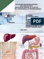 Encelofapatia Hepatica - Seminario