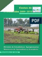 Documento Costos de Produccin 2010