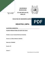 Auditoria Ambiental Planta Productora de Aceite de Oliva