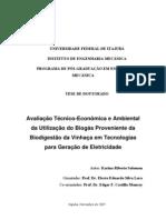 AVALIAÇÃO DA GERAÇÃO DE ELETRICIDADE PELA DIGESTÃO DA VINHAÇA