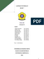 laporan pleno L3