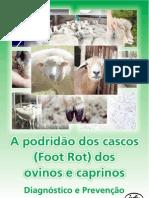 Informativo Foot Vac