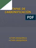 ETAPAS DE CARBONIFICACIÓN