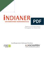 Indianer  (2011)