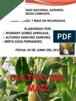 Granos Basicos en Nicaragua