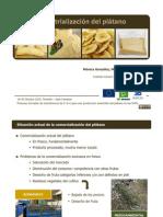 industrializacindelpltano-jornadasbiomusa2010-110217163045-phpapp01