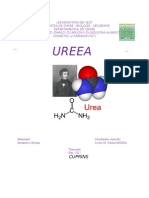 UREEA.2003