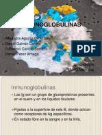 inmunoglobulinas-111009211851-phpapp02