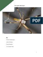 Spider Team Final Paper 2012