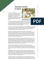Informe Técnico Esquistossomose