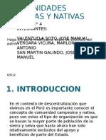 Comunidades Andinas y Nativasppt(1)