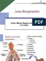(T) 10.16 - Sistema Respiratório