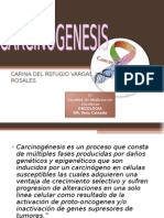 oncologia carcinogenesis