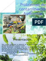 Problemas de contaminanción ambiental y alternativas de solución