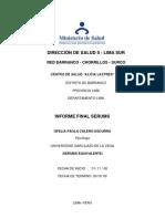 Informe Final Serums