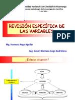 C6 REVISIÓN ESPECÍFICA DE LAS VARIABLES