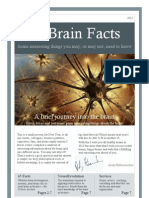 65 Brain Facts