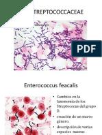 familiastreptococcaceae-091226053020-phpapp02_2