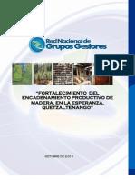 Diagnostico de La Cadena de Madera en La Esperanza[1]