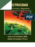electricidad teoria de circuitos y magnetismo - Fernández