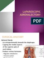 Laparoscopic Adrenalectomy