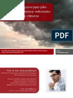 Architektura korporacyjna jako narzędzie koordynacji wdrażania przetwarzania w chmurze