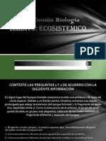 Preicfes - Ambito Ecosistemico