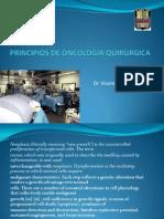 Principios de Oncologia