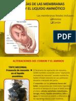 ANOMALÍAS DE LAS MEMBRANAS FETALES Y EL LIQUIDO