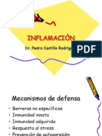 1. Inflamación