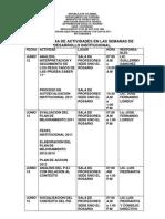 Cronograma de Actividades en Las Semanas de Desarrollo Institucional