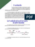 betaoxidacion