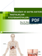 karaciger fitoterapi