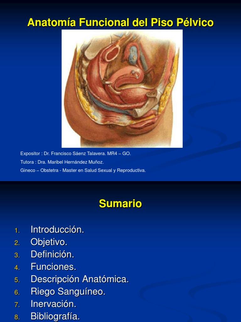 Contemporáneo Anatomía Y Fisiología Openstax Universidad Rice De ...