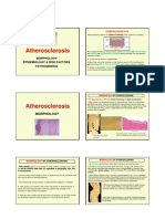 Atherosclerosis Lecture 2010 0