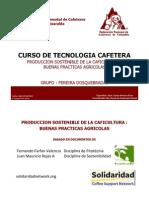 Produccion Sostenible de Cafe