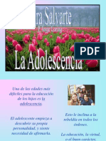 01930002 Noviazgoymatr Presentaciones 10.4tom.adolescencia (1)
