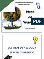 Ideas de Negocio.. Irka Bracho
