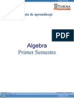 Guia Algebra Agosto 10[1]