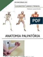 ANATOMIA Palp. Cotovelo