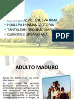 ADULTO MADUROYA