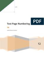 PKN - TestDrive Page Numbering