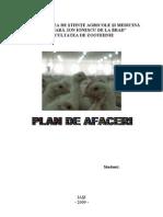 Plan de Afaceri Ferma Pui