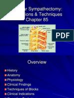 17.LumbarSympathectomy