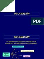 Inflamación _1