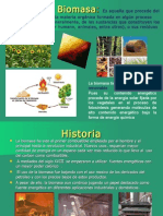 Energía de biomasa1