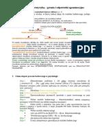Metodologia+Kog Pyt+i+Odp