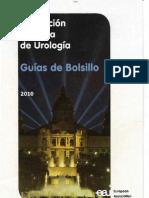 Guias Bolsillo AUE